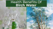 8 Amazing Health Benefits Of Birch Water