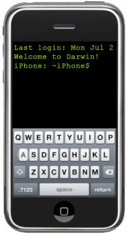 iPhone hacked for shell access
