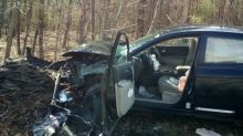 Woman crashes her car after seeing a spider while driving