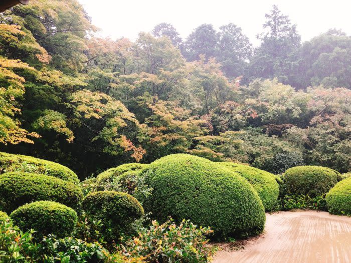 京都賞楓一日散策散步路線詩仙堂庭園夏景