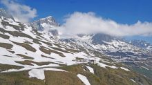 Climate crisis: Earlier snowmelt in Alps means plants lose 'protective coat', exposing them to deadly frosts