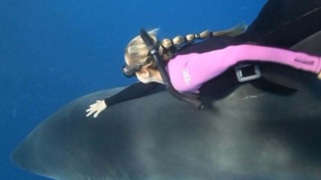 Woman Swims With Sharks in Perfect Harmony