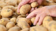 Pepsico verklagt indische Bauern wegen Kartoffelsorte