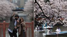 The hidden warning behind country's seemingly idyllic scenes