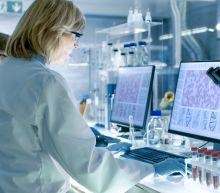 Australian scientists 'first to grow' new coronavirus outside China