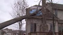 Noon: Strongsville tree on house