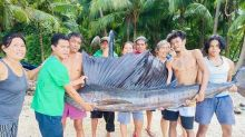 Giant swordfish caught in Samboan