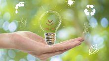 Siete prácticas sencillas que puedes llevar a cabo para proteger el medio ambiente