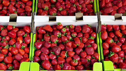 Farmers in crisis as strawberries are dumped en masse