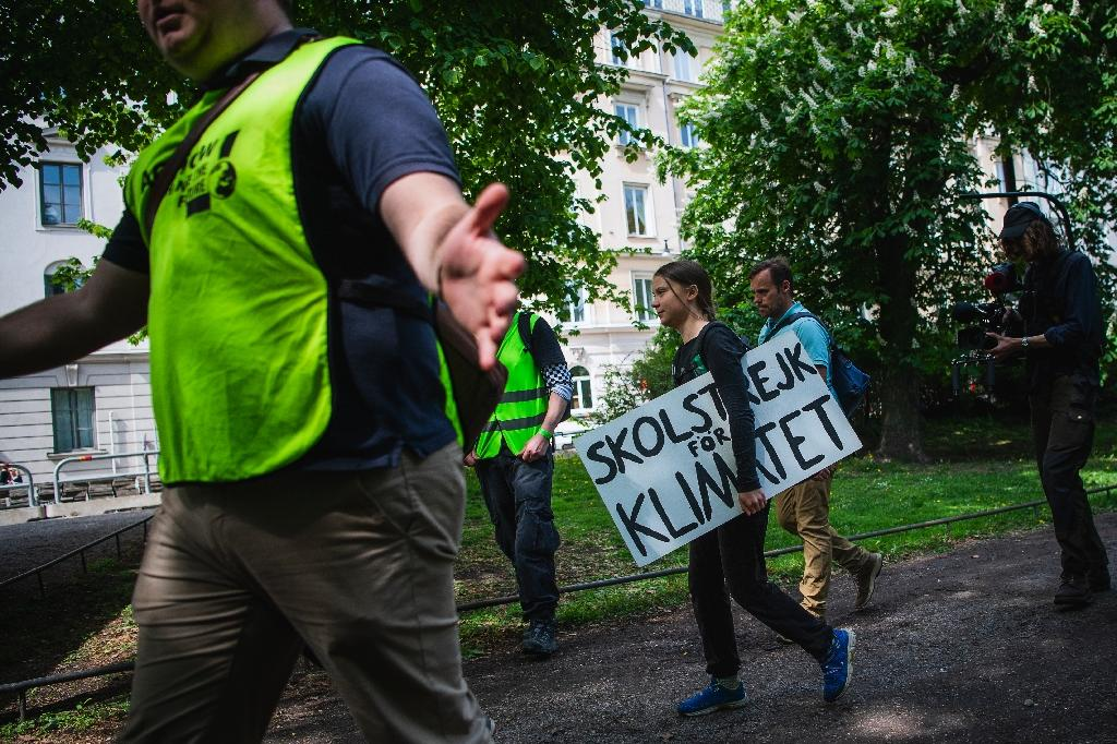Greta Thunberg Afd