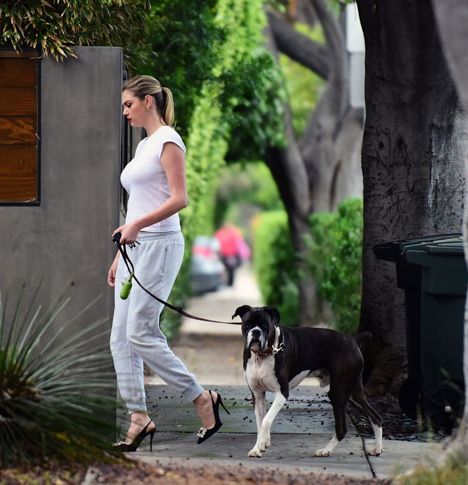 Kate Upton walks her dog in heels around her Los Angeles neighborhood