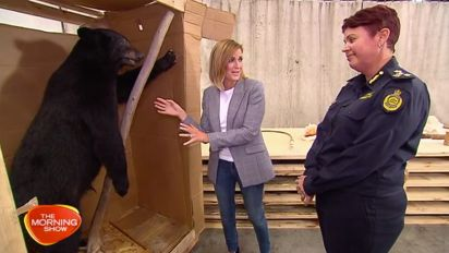 Black market wildlife trade in Australia