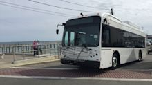 Martha's Vineyard Transit Authority bus driver passed a potential passenger 'because you are black'