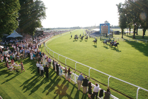 Image result for Windsor racecourse