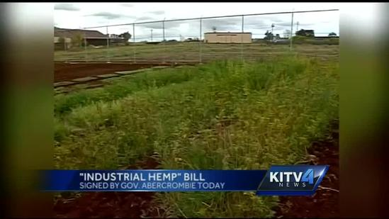 Gov. Neil Abercrombie signs industrial hemp bill