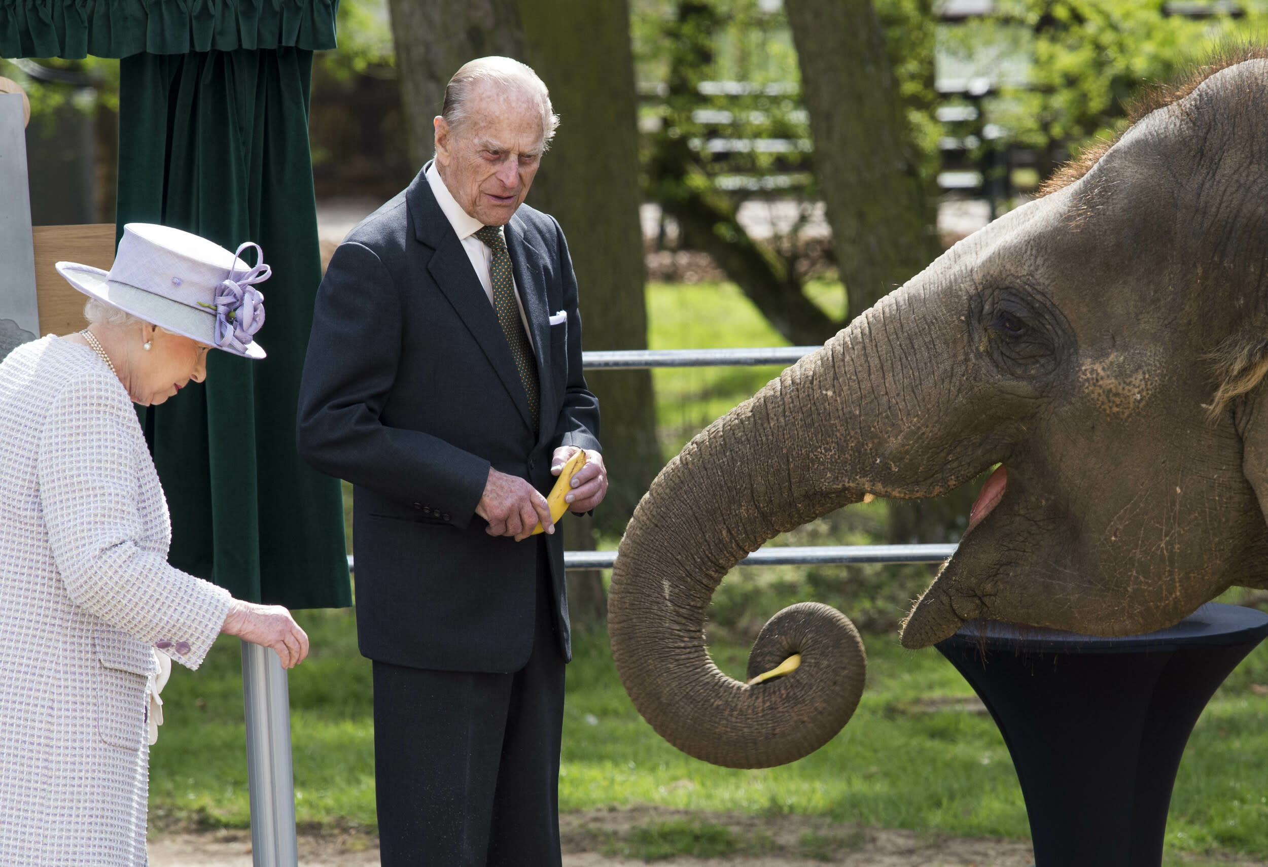 Photo by: KGC/STAR MAX/IPx 2017 4/11/17 Queen Elizabeth II and Prince Philip, Duke of Edinburgh, feed Donna a 7 year old Asian Elephant during a visit to open the new Centre for Elephant Care at ZSL Whipsnade Zoo.