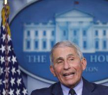 White House coronavirus adviser Fauci to meet with Biden transition team: CBS