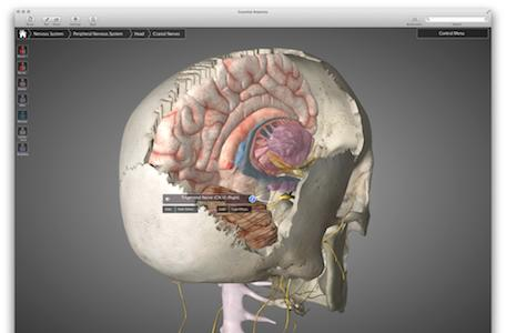 3D4Medical's Essential Anatomy now available for OS X