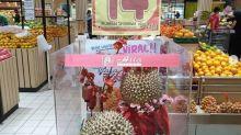 印尼$7000天價榴槤 每3年產20個