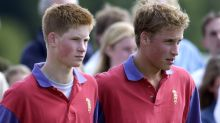 Prince Harry's phone 'was hacked while he sat his GCSEs', whistleblower claims