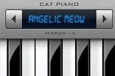 Make a video with Cat Piano, win a DS