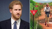 Prince Harry to visit Angola minefield Princess Diana walked through in 1997