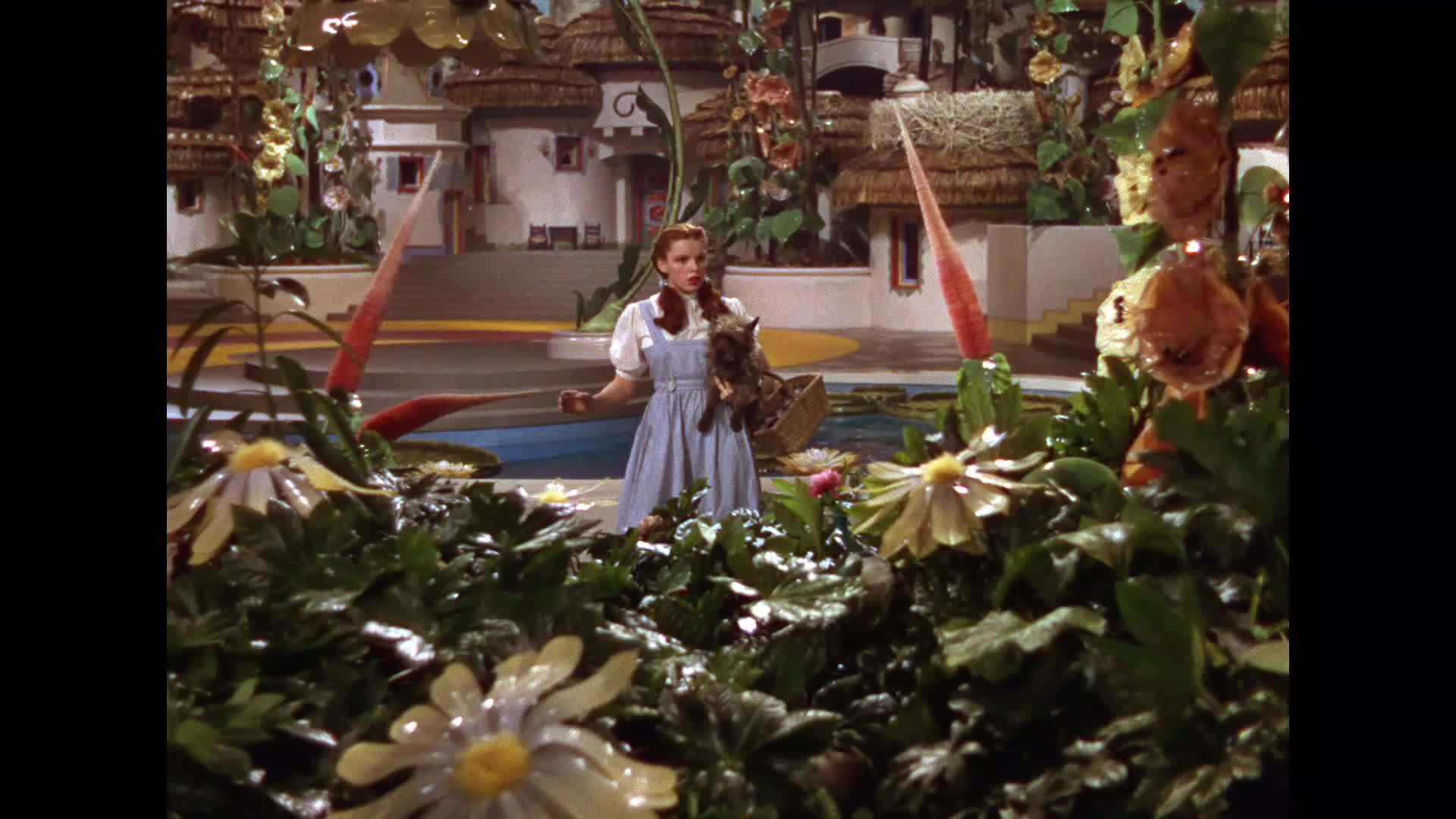 reasons you still have to love the wizard of oz