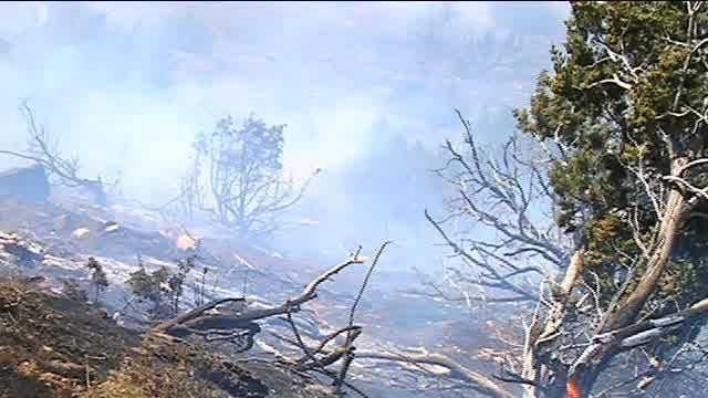 Raw Footage From Cove Fire