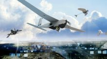 AeroVironment's 2020 Outlook Clips Its Wings