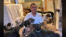 Face à l'ouragan, il héberge des centaines d'animaux errants chez lui