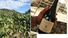 Napa Valley's first black-owned winery has rich history (and sweet zinfandel)