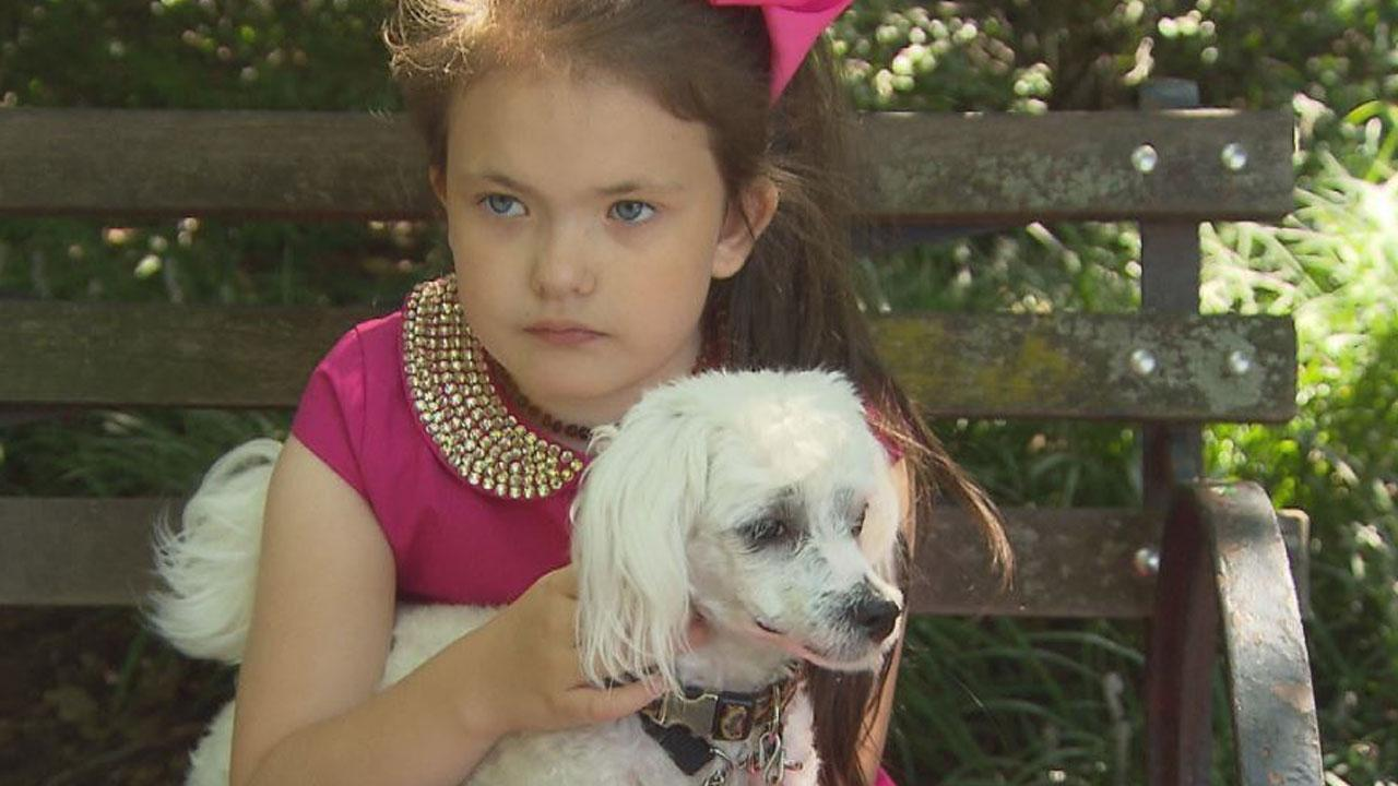 Woman Says She Was Mom-Shamed for Letting 8-Year-Old Daughter Walk Dog Alone