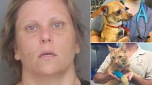 Woman Arrested After Dead Dog, 2 Other Pets Found in 113-Degree Vehicle: Cops