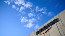 Amazon bans sales of foreign seeds in US after mystery packets