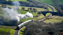 Steam trains could be forced off the tracks by new tougher safety rules, heritage railway boss warns