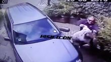 Terrifying moment millionaire attacks pensioner in driveway