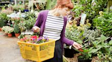 The UK's best garden centres