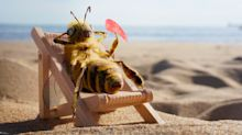This bee has become a social media influencer for a very cool reason