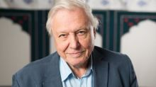Blue Planet: Plankton species named after Sir David Attenborough's BBC series