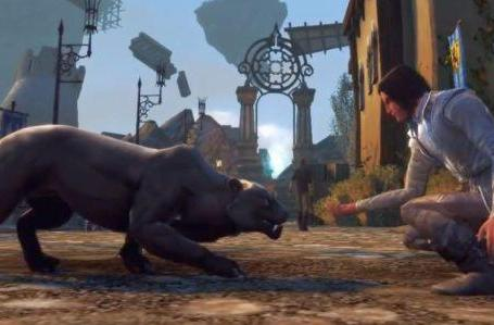 Neverwinter's companions are real bears (and cats)