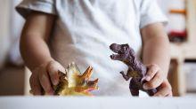Good News des Tages: Spielzeug im Feuer verbrannt - Junge bekommt Hunderte neue Dinosaurier von Fremden