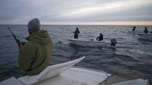 El cambio climático despierta codicia por el Ártico