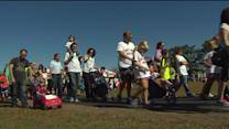 Hundreds Walk To Raise Money For Allergy Awareness