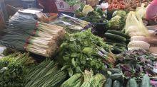 哈格比颱風遠離 葉菜類價格漲翻