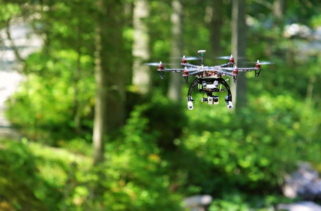 Hiker with head-mounted cameras taught drones to fly through forests