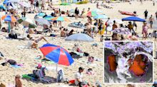 Australia Day weather: Sweltering 40C heatwave is here to stay