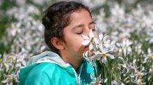 Síntomas del coronavirus | Qué es el entrenamiento del olfato y por qué genera tanto interés durante la pandemia