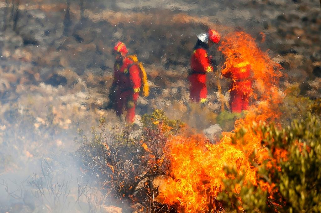 According to Spain's agriculture ministry, wildfires destroyed almost 40,000 hectares (100,000 acres) of land between January and August (AFP Photo/Manuel Lorenzo)