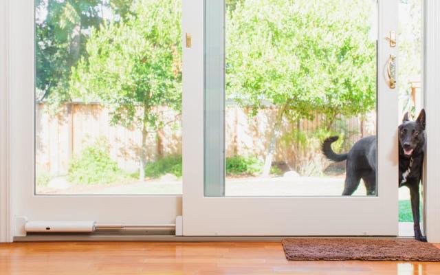 Wayzn turns your sliding door into a smart pet entrance