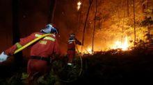 Suben a 39 los muertos por incendios forestales en Portugal y España